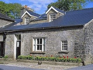 Bright 4 bedroom House in Gort - Gort vacation rentals