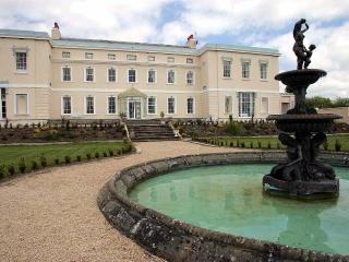 Kildare Palladian Mansion - Athy vacation rentals