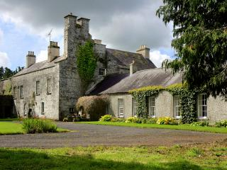 Irish Country Castle - Milltown vacation rentals