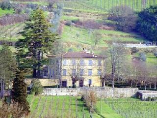 7 bedroom House with Private Outdoor Pool in Serravalle Pistoiese - Serravalle Pistoiese vacation rentals