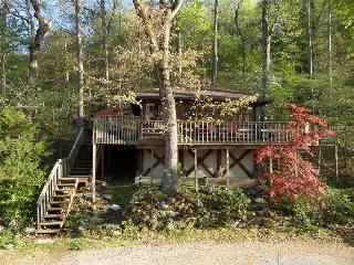 Lake Lucerne 1930s Treehouse Cabin - Lake Front, Amazing View, Large Decks, Authentic Architecture - Eureka Springs vacation rentals