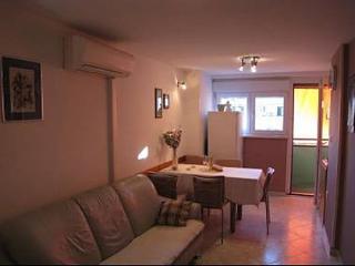 8008  A1(3+1) - Zadar - Zadar vacation rentals