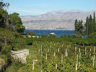 03901POST H(2+2) - Cove Lovrecina (Postira) - Cove Lovrecina (Postira) vacation rentals