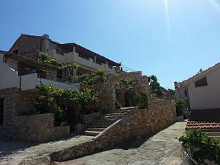 2176 A1(4+2) - Ivan Dolac - Ivan Dolac vacation rentals