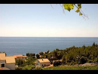 2176 A7(2+2) - Ivan Dolac - Ivan Dolac vacation rentals