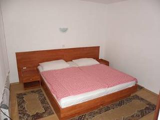 1 bedroom Apartment with Television in Stara Novalja - Stara Novalja vacation rentals