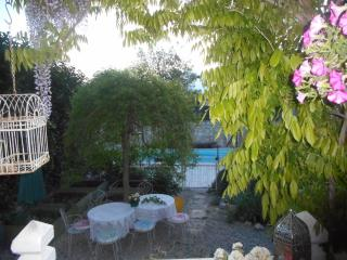 17 in September with Figs, Grapes, Chestnuts! - Saint-Jean-de-Maruejols-et-Avejan vacation rentals