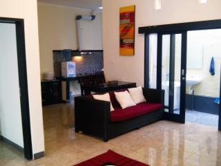 house 2 bedrooms/2 bathrooms full furnished Bali - Denpasar vacation rentals