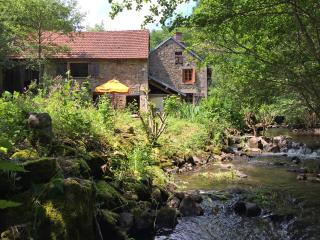 Nice Cottage with Internet Access and Dishwasher - Saint Priest des Champs vacation rentals