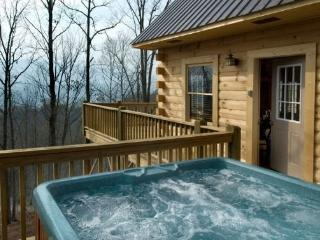 Sundance at Deep Creek - Lovely Cabin Secluded by Trees Convenient to National Park Waterfall Hikes and Tubing - Bryson City vacation rentals