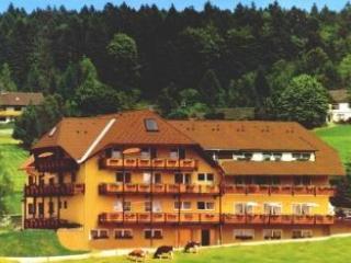 Vacation Apartment in Herrischried - 1076 sqft, 2 bedrooms, 1 living room / bedroom, max. 9 people (#… - Herrischried vacation rentals