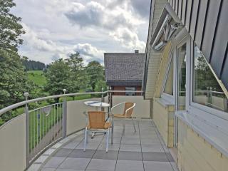 Vacation Apartment in Schönwald -  (# 6877) - Freiburg im Breisgau vacation rentals