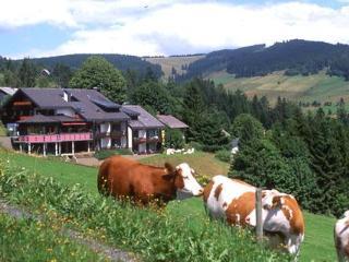 Guest Room in Todtnauberg -  (# 7194) - Freiburg im Breisgau vacation rentals