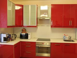 3-bedroom flat near subway Udelnaya - Saint Petersburg vacation rentals
