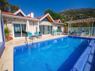 Villa Pearl - Islamlar vacation rentals