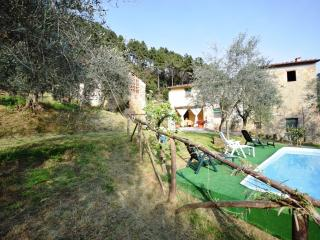 Nice Guest house with Deck and Internet Access - San Martino in Freddana vacation rentals