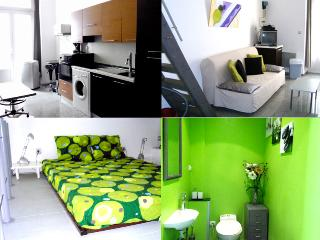 Design Loft 1/2 rooms- Center - Nice vacation rentals