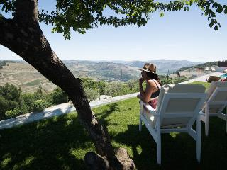 Luxury Holiday Villa with Pool Sleeps 8-11 in Douro Valley - Covas do Douro vacation rentals