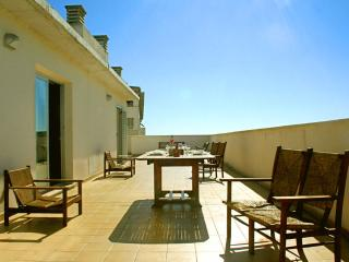 Penthouse apartment with private terraces - Palma de Mallorca vacation rentals