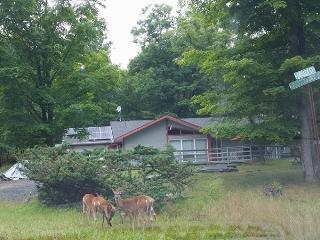 Modern Secluded in Resort Area,HotTub,Netflix,Wifi - Bushkill vacation rentals