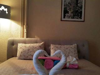 One bedroom apt with Jacuzzi - Vilnius vacation rentals