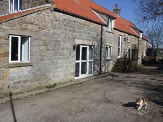 foxglove cottage - Lealholm vacation rentals