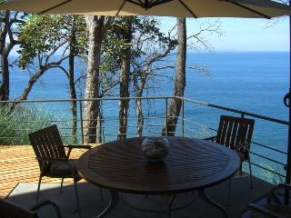 BEAUTIFUL CONDO ON THE OCEAN - Garabito vacation rentals