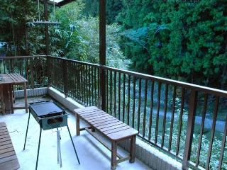 Relaxing the holiday with family or friends - Kimino-cho vacation rentals