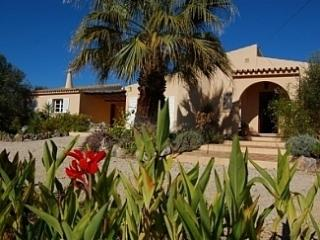Peaceful Villa Nr. Moncarapacho , East Algarve - Tavira vacation rentals