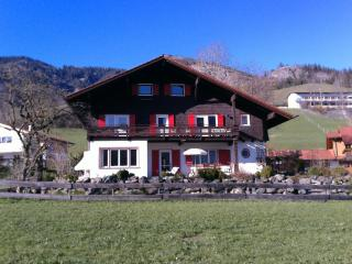Fun Holiday,Alpen Grillen Wandern - Bad Hindelang vacation rentals
