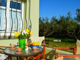 Apartment in Panselino villa with panoramic view,1bedroom,surrounded by nature - Tavronitis vacation rentals