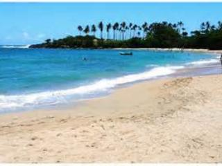 Beachfront apartment Cofresi beach, Puerto Plata, - Puerto Plata vacation rentals