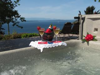 Eagles View B&B, LLC - Sound View Room - Seattle vacation rentals