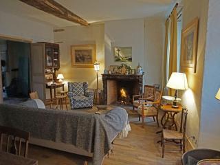 La Maison Jeanne d'Arc, exquise demeure. - Saint-Fargeau vacation rentals