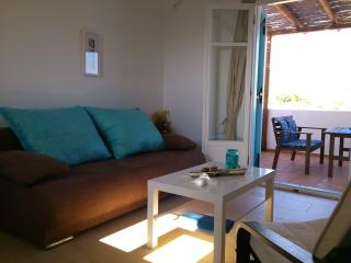 Beautiful Condo with Internet Access and Television - Agios Georgios vacation rentals