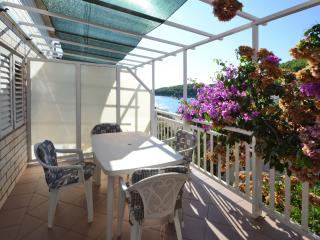 Apartment Lara - Blato vacation rentals