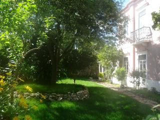 Vast Quinta 18 & 19th c. (C.E) 1/2 + Swimming pool - Cadaval vacation rentals