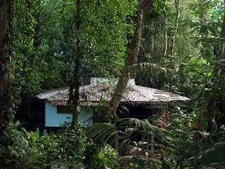 BUNGALOW BLUE MORPHO IN THE JUNGLE - Cocles vacation rentals