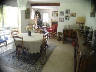 villa prés du pont du gard - Saint-Hilaire-d'Ozilhan vacation rentals