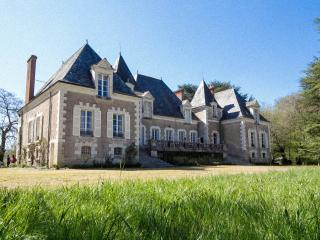 Nice Chateau with Internet Access and Outdoor Dining Area - Cande-sur-Beuvron vacation rentals