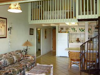 Kepuhi Beach Resort - Maunaloa vacation rentals