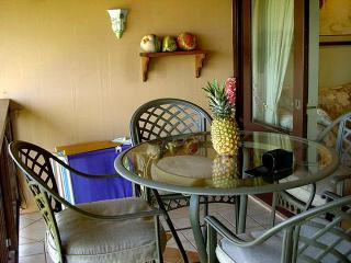 1 bedroom Apartment with Deck in Maunaloa - Maunaloa vacation rentals