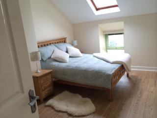Lovely House with Internet Access and Kettle - Cashel vacation rentals