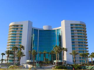 Nice Apartment with A/C and Satellite Or Cable TV in Orange Beach - Orange Beach vacation rentals