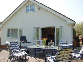 Nice House with Deck and Internet Access - Bryncrug vacation rentals