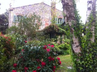 """ La casa di Cloe's in campagna"" - Massarosa vacation rentals"