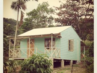 The Likkle Nature Queen : Caribbean Beach Cottage - Boston Bay vacation rentals