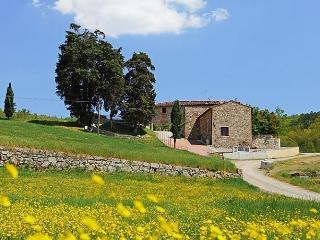 Selvapiana - Greve in Chianti vacation rentals