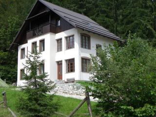 Middle of Nowhere Nature House - Bled vacation rentals