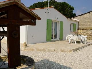 Domino - Le Chateau d'Oleron vacation rentals